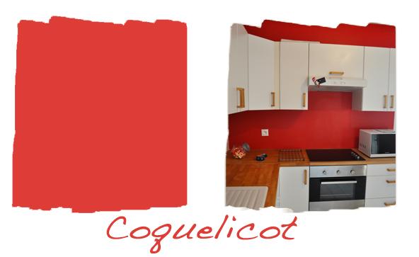 Cuisine avec 2 murs rouges