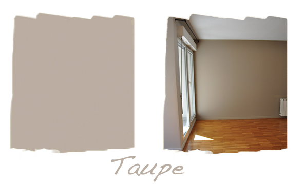 Mur Taupe Salon Simple Canap Taupe Belle Chaise D C Aco