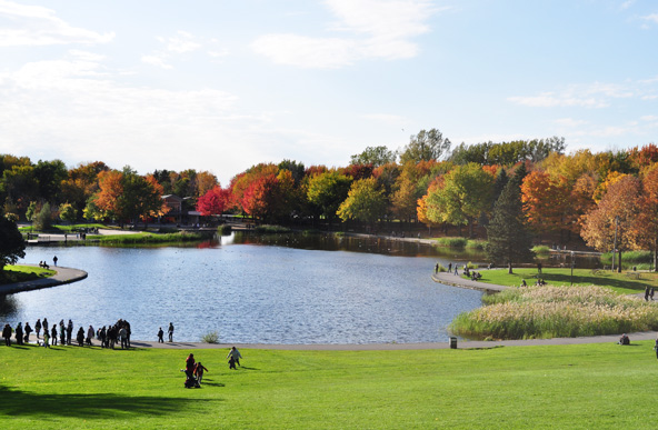 Lac des castors - Parc Mont-Royal