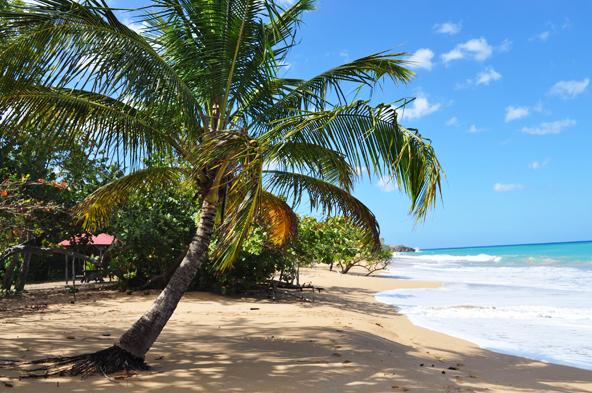 Anse de la Perle - Guadeloupe