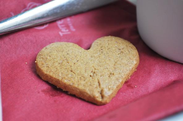 Terre Adélice - Biscuit