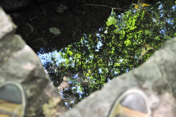 Fontaine de Barenton - Forêt de Brocéliande