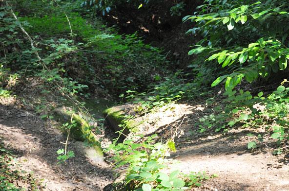 Fontaine de Jouvence - Forêt de Brocéliande
