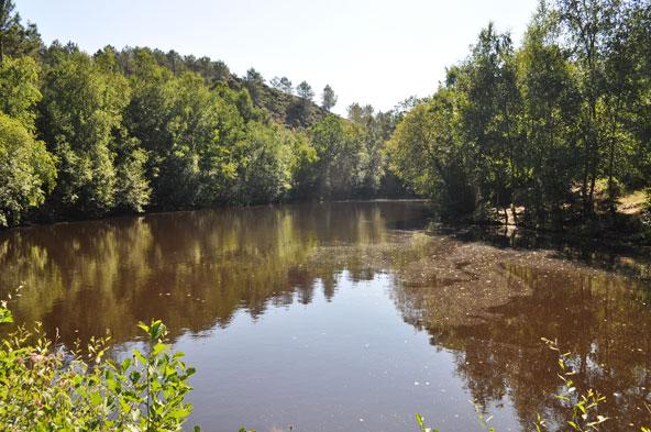 Miroir Aux Fées - Forêt de Brocéliande
