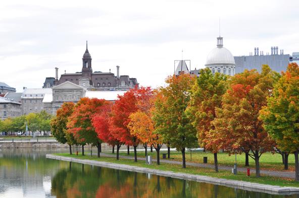 Automne - Vieux Montreal