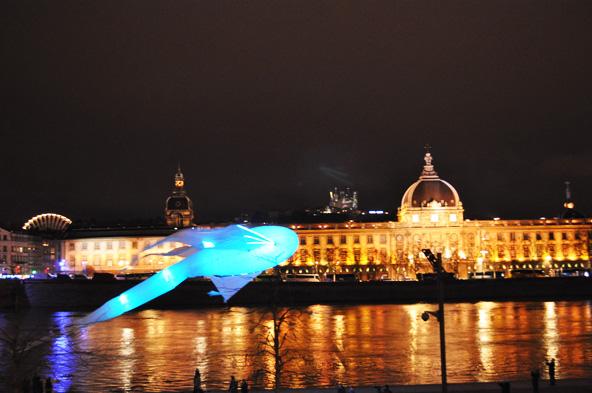 Fête des Lumières 2012 - Le bal des luminéoles