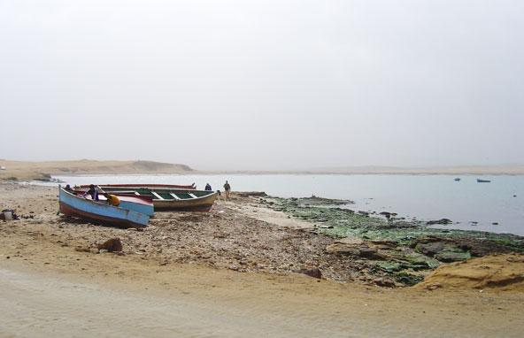 Paracas - Pérou