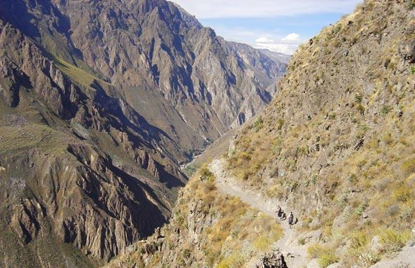 Canyon de Colca (Pérou)