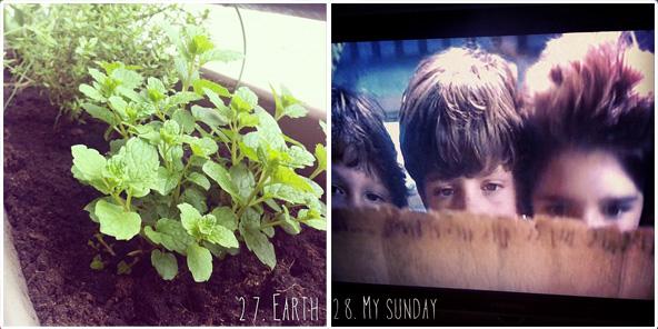 Earth / My sunday