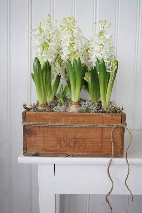 Cagette fleurie