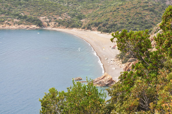Sur la route de Bussaglia (Corse)