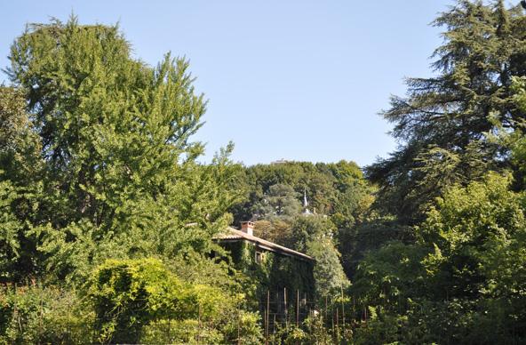 Ile Barbe - Lyon