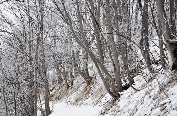 Valloire (Savoie)