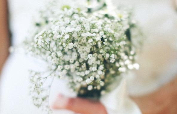 Bouquet de gypsophile (Anna Naphtali)