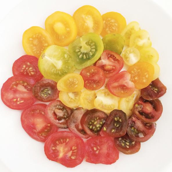 Arc-en-ciel de tomates