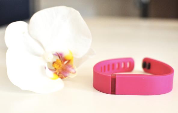 Bilan Fitbit Flex