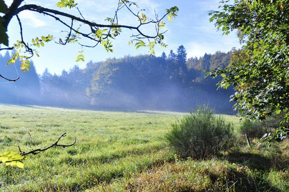 L'automne à la campagne