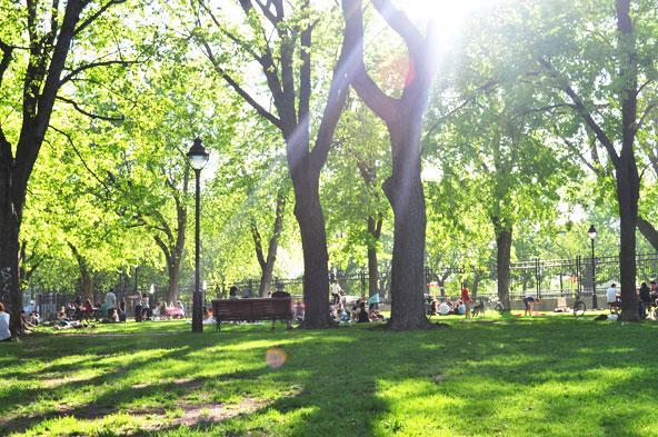 Parc Laurier (Montréal)