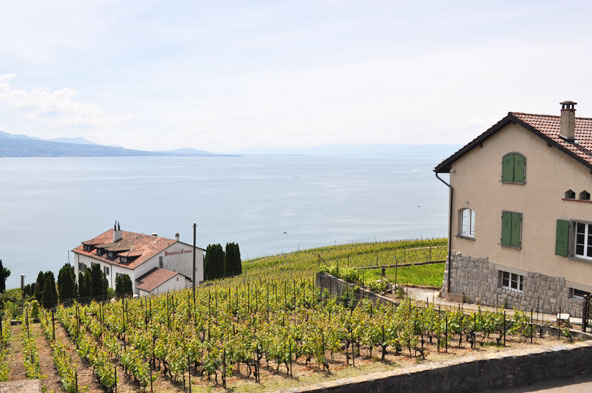 Grandvaux (Suisse)