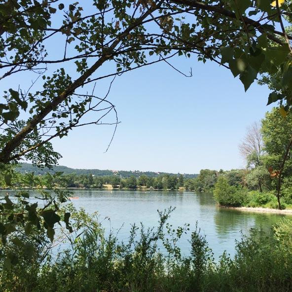 Pique-nique au parc de Miribel-Jonage