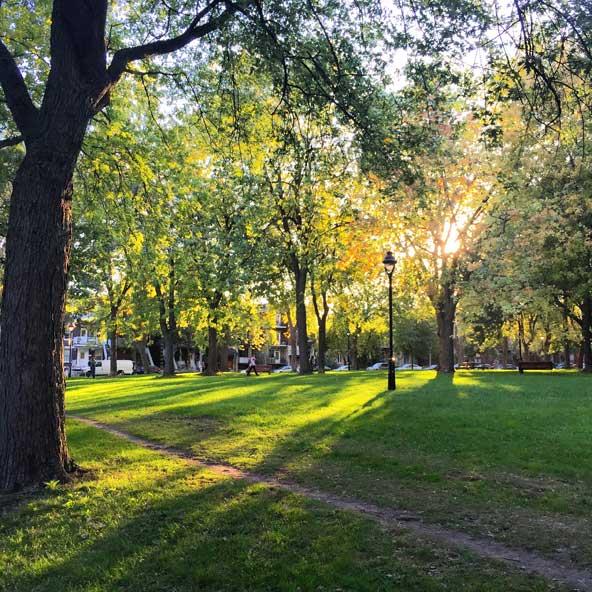 Parc Laurier en automne - Montréal