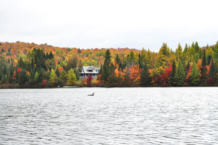 Chalet à Sainte-Lucie-des-Laurentides (Québec)