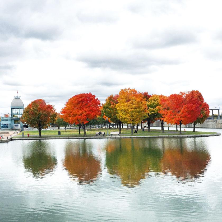 Montréal en automne