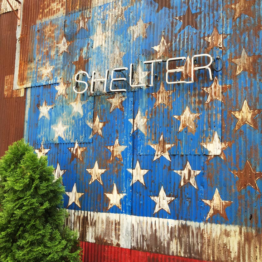 Shelter (Brooklyn)