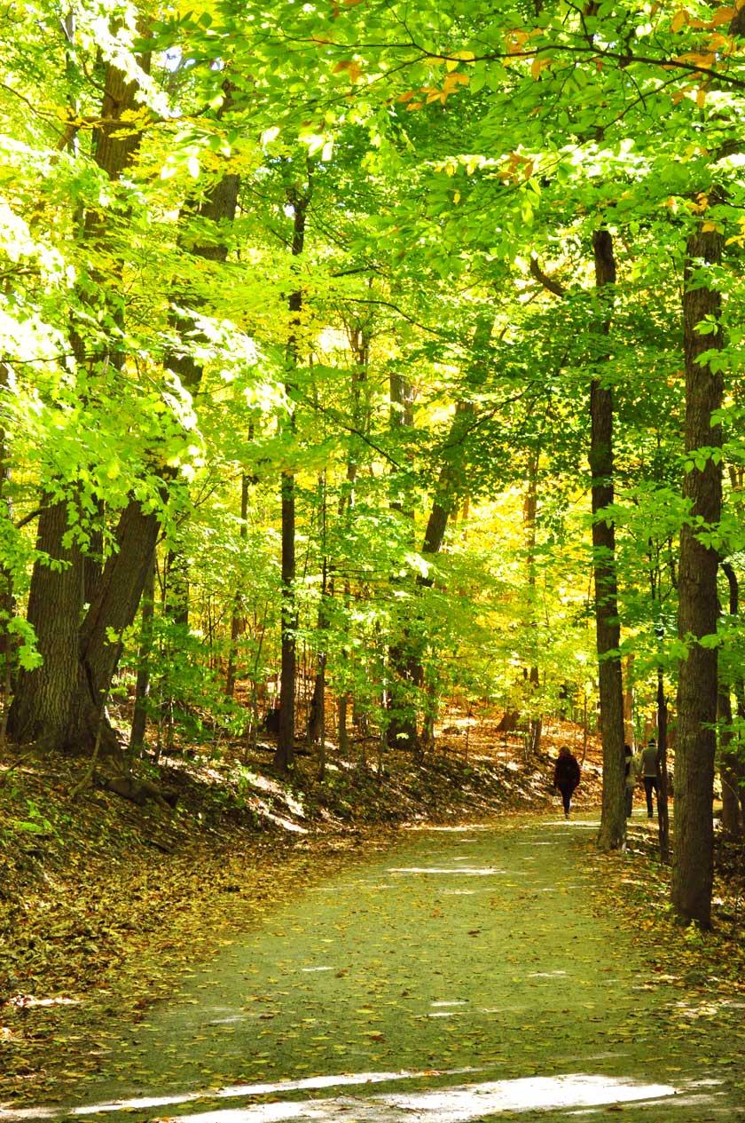 L'automne au Mont-Saint-Bruno (Montréal)