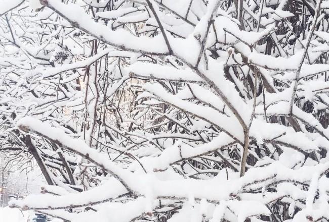 Neige à Montréal