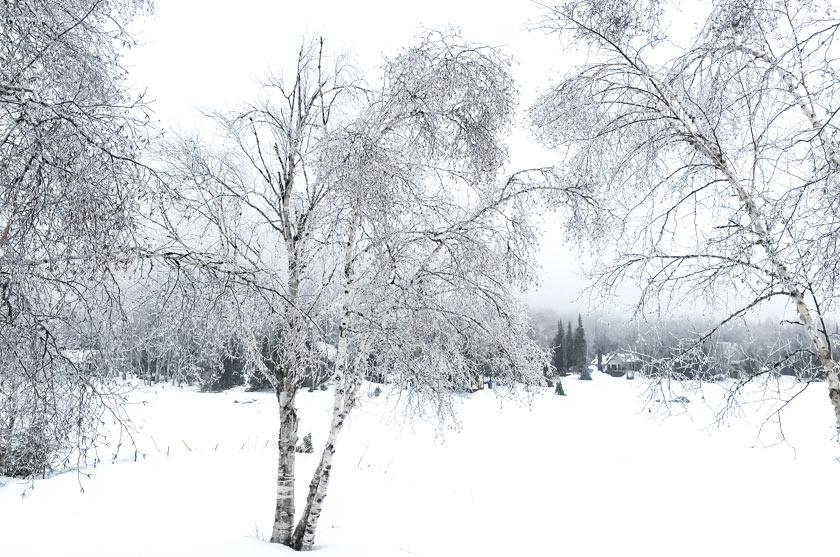 L'hiver au Québec