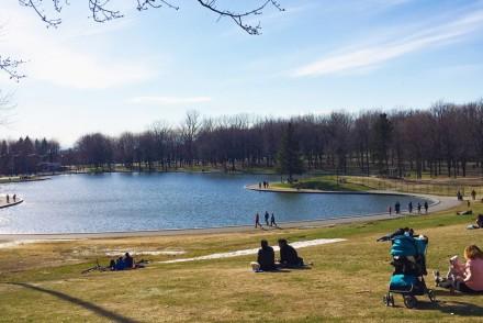 Parc du Mont-Royal au printemps