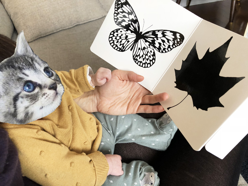 Livre noir et blanc bébé